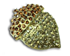 Jeweled Magnet